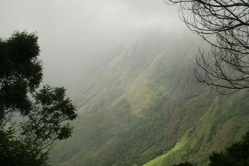 Munnar tea plantation 2