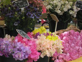 Paris flowers 2