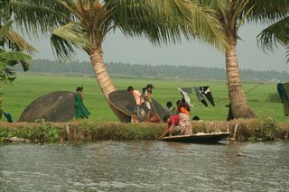 Kerala backwaters1