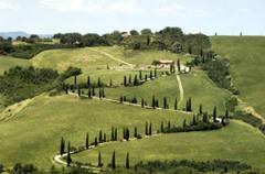 Tuscan_road_3
