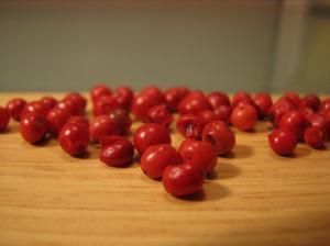 Pink_pepper_2_2